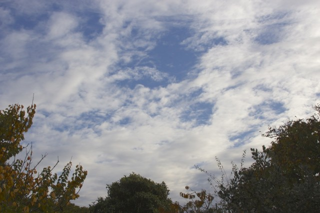 Over the Bay Area this morning: Nice clouds, but barely any rain. (Dan Brekke/KQED)