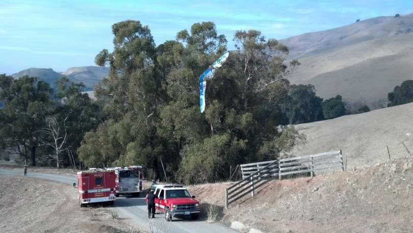 A hang glider hangs in a tree in Ed Levin County Park in Milpitas. Local firefighters called on the California Highway Patrol to rescue the pilot from trees that couldn't be reached by aerial ladders (Photo: California Highway Patrol)