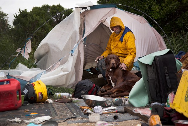 Bulb resident Glenn Bachelder and his dog Enoch sat in a tent as bulldozers rumbled in the background. Bachelder has lived at Albany Bulb for 7 years and doesn't know where he'll go when he's forced to leave (Mark Andrew Boyer/KQED)