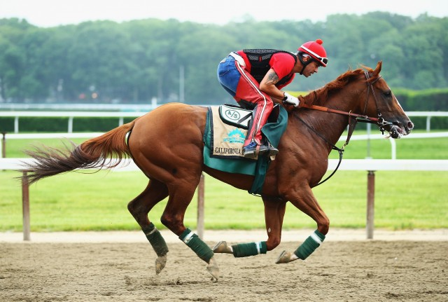 California Chrome, with exercise rider Willie Delgado up, at Belmont Park. (Al Bello/Getty Images)