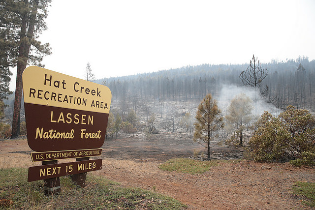 The Lassen National Forest has been hit hard by wildfires. (Photo courtesy of Cal OES)