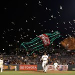 Listen: Why Gulls Show Up During the 8th Inning of Giants Games