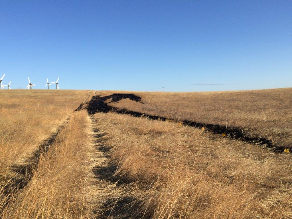 Pipeline at Center of Altamont Pass Oil Spill Also Ruptured Last September