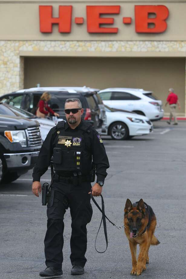 The Security Store Houston H-e-b Putting Canine Security Patrols At 7 San Antonio