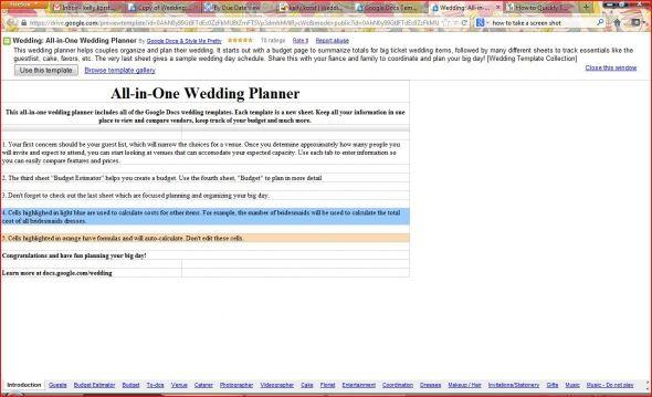 Wedding Planner Template Weddingbee Photo Gallery - wedding plan