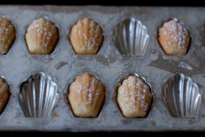 Madeleines Recipe - 101 Cookbooks
