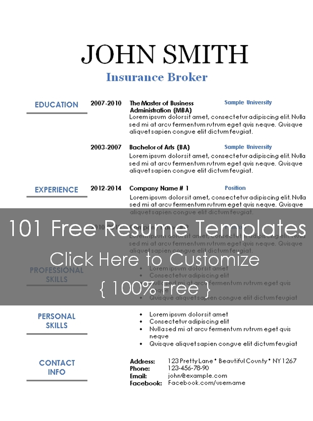 Executive Resume Template - resume templates 101