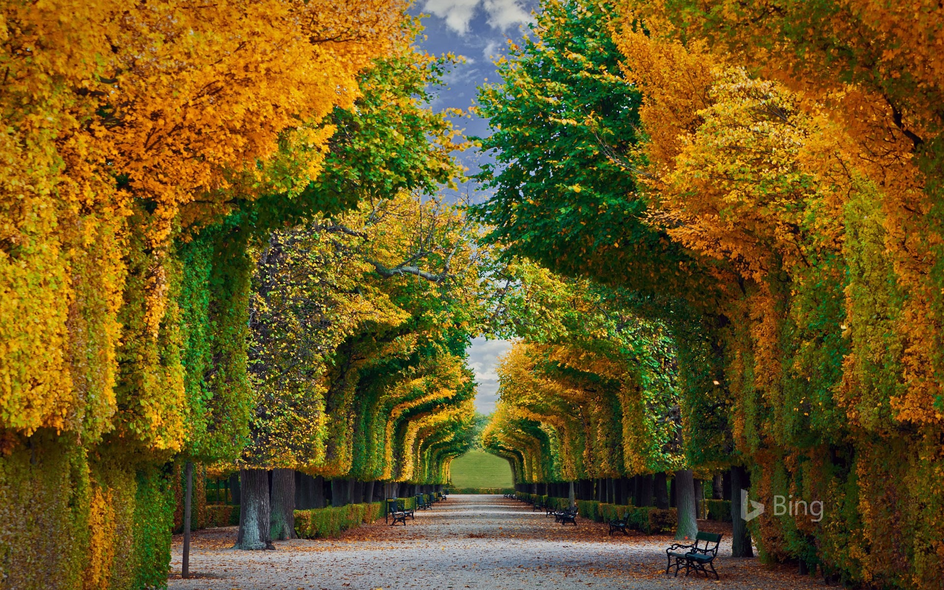 Apple Iphone X Wallpaper From Commercial Schonbrunn Palace Vienna 2016 Bing Desktop Wallpaper