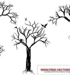 001_nature_trees-free-vector-5