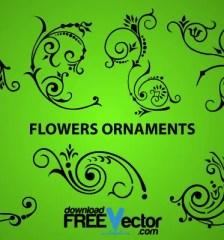 308-elegant-flowers-ornaments-design