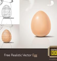 034-free-realistic-vector-egg