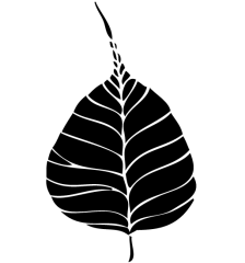 057-free-bodhi-leaf-vector-art