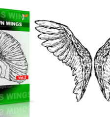 vector_and_brush_wings_vol_2