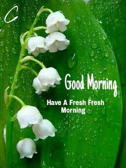 Free Hd Hindu God Wallpapers Good Morning Images 3d Gif Hd Pics Amp Photos Free Download