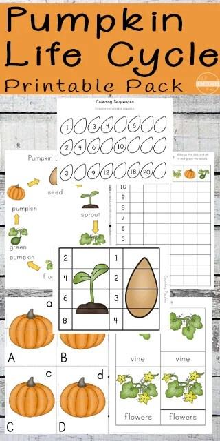 Pumpkin Life Cycle Worksheets (Prek-3rd) 123 Homeschool 4 Me