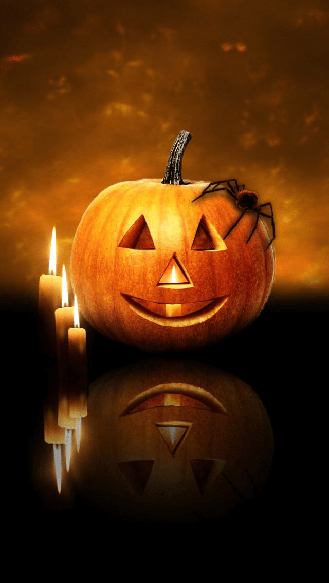 Free Fall Cat Wallpaper Halloween With Candle