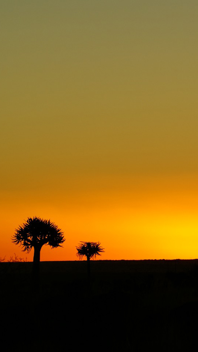 Xperia 3d Wallpaper Sunset Silhouette Tree