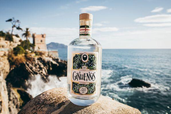 gin-40