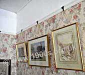 The Victorian home: the parlour