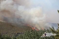 franschhoek-fire-130128-20