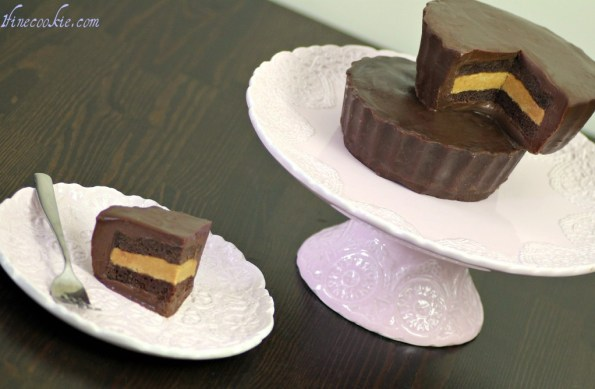 Giant peanut butter cup cake recipe by 1 Fine Cookie