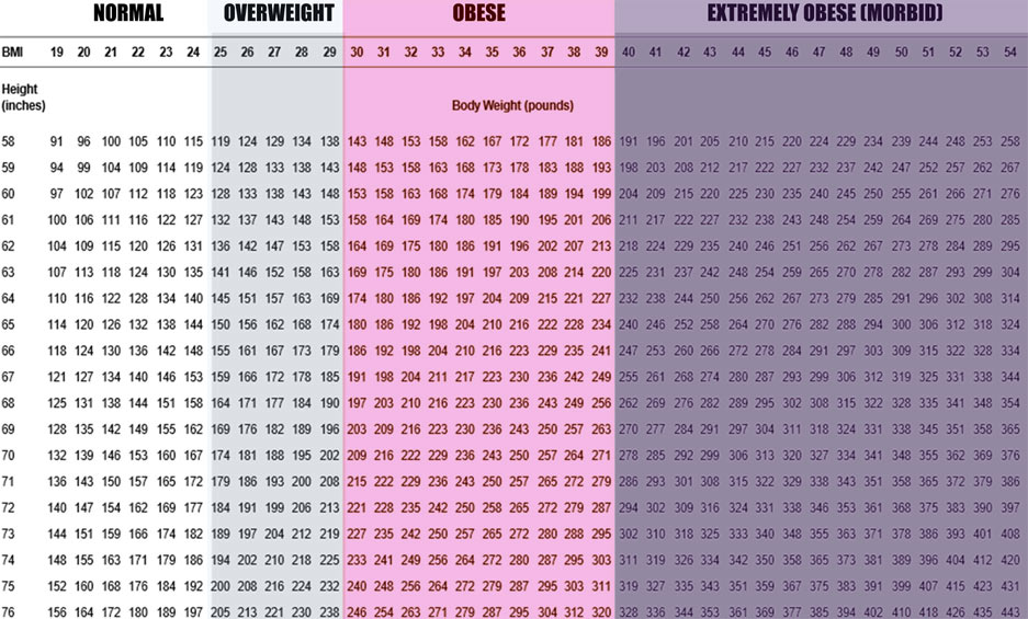 Body fat percentage calculator + BMI  BMR Weight Loss Calculator - 33 bmi
