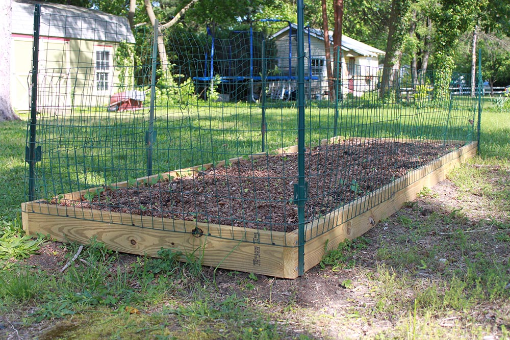 Vegetable garden fence for How to protect your garden from animals