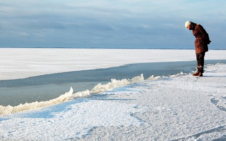 Malene studerer en våge i isen.