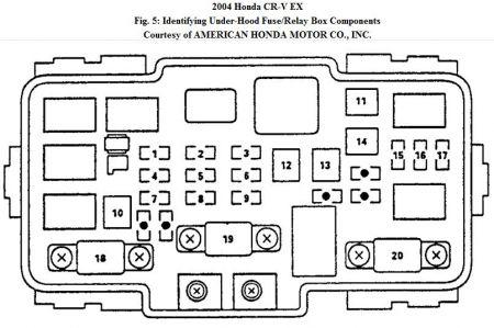 1999 Honda Cr V Engine Diagram - 7arzooudkpeternakaninfo \u2022