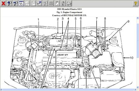 1997 Hyundai Elantra Engine Diagram Online Wiring Diagram