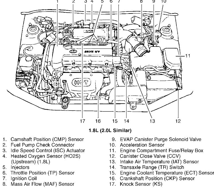 1997 hyundai tiburon engine wiring diagram