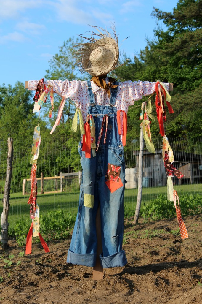 scarecrow 022
