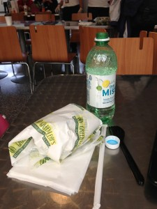 My lovely lunch at Newark International Airport!