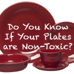 Fiesta – Safe Dinnerware