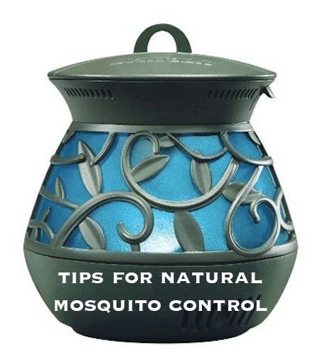 Tips for Natural Mosquito Control