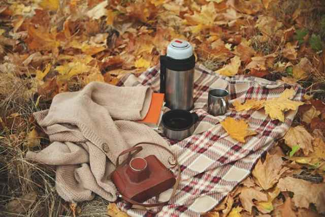 Warm Fall Drinks to Take On-The-Go
