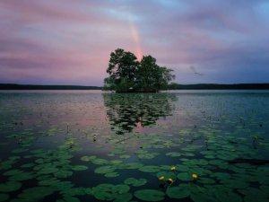 1stPlace-Nature-AaronSandberg-1-800x600