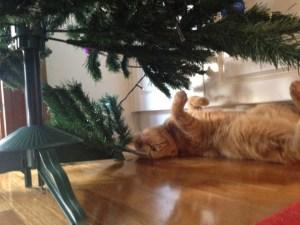 pulling tree apart