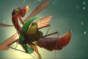 Making of Insects by Ramtin Ahmadi-3dart