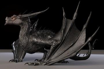 3D Model Free Dragon Rigged