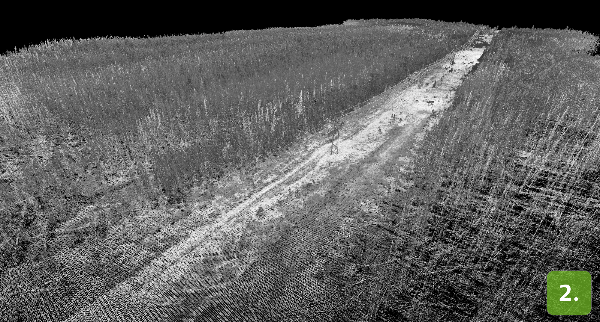 Airborne LiDAR scan of powerlines and forest