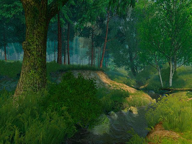 3d Garden Live Wallpaper Nature 3d Screensavers Summer Forest Set Up Camp On
