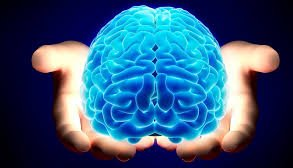 Mirror your Brain for Technological Innovation