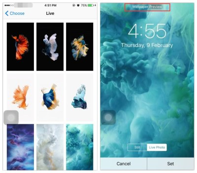 How To Set and Use Live Wallpaper On iPhone7? - 3uTools