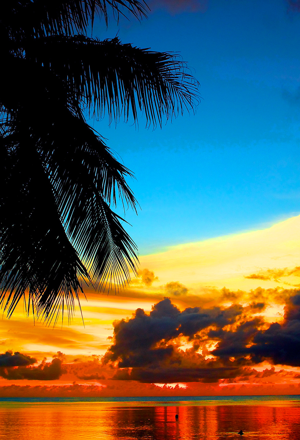 Beautiful Wallpapers For Iphone 6 Plus Lovely Tropical Sunset Wallpaper For Iphone X 8 7 6