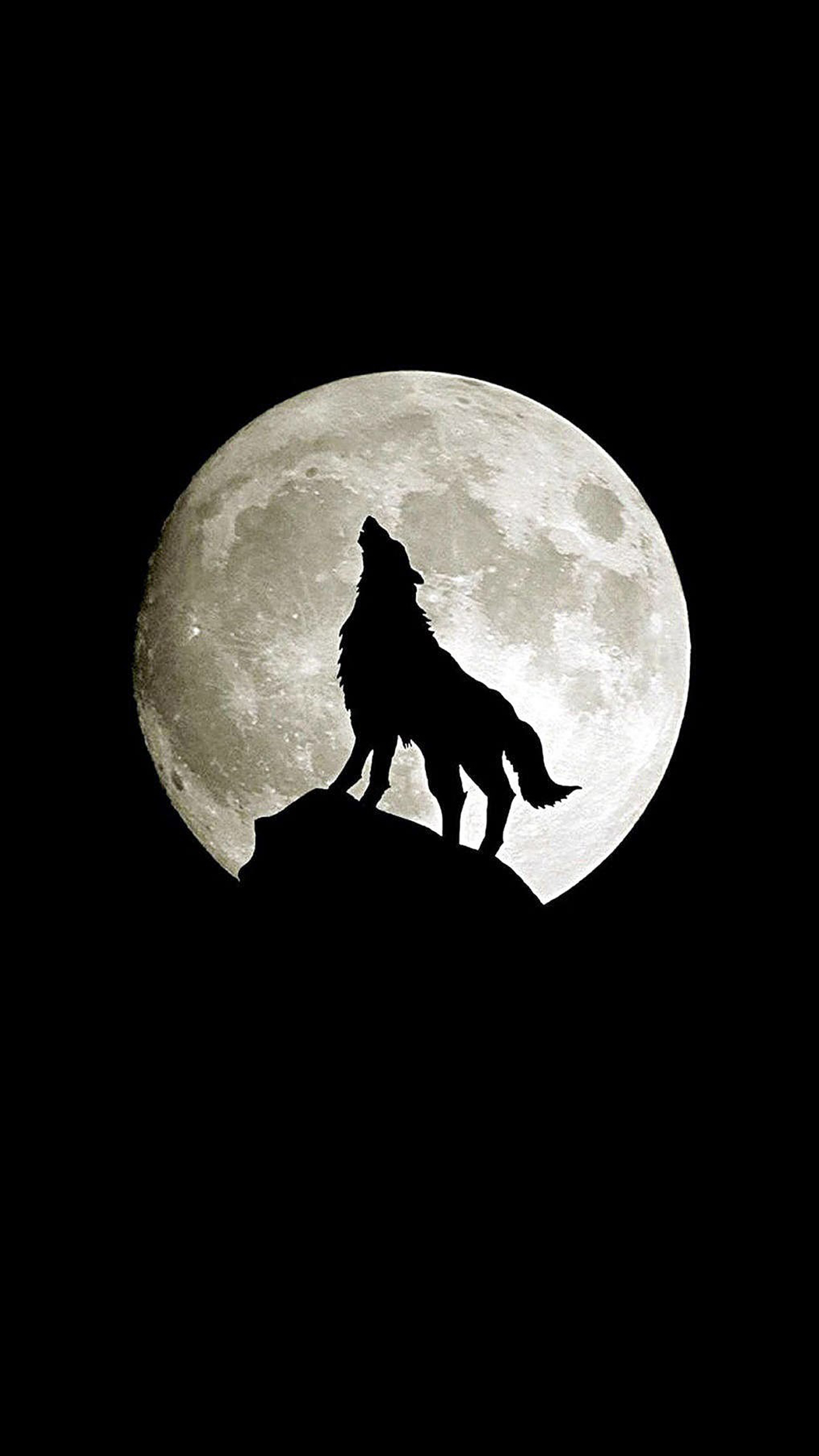 Iphone 5s Beach Wallpaper Loup En Pleine Lune Wallpaper For Iphone X 8 7 6 Free