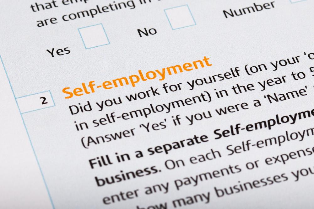 self_employed - 3 Wise Bears