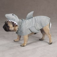 Dog Halloween Costumes for 2013 Are Here