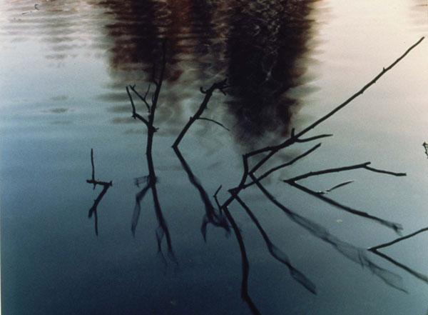 Twin Ponds Park October 23, 1983 © Johsel Namkung 1983, Courtesy of the artist's estate