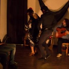 Flamenco-0033